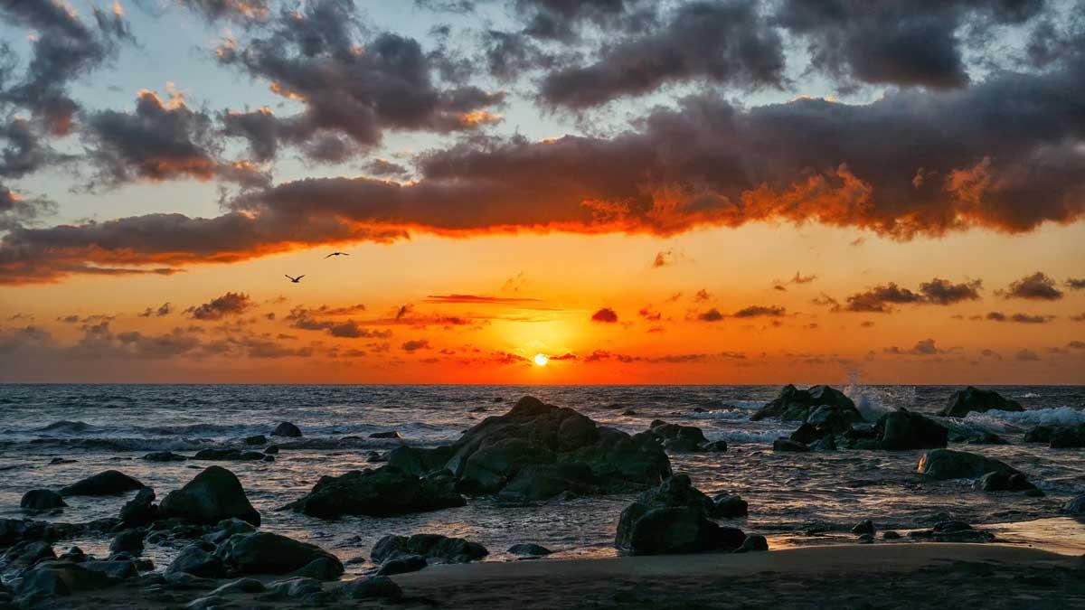 Inseltreff La Gomera